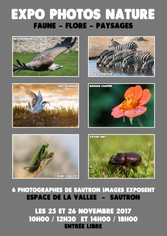 Exposition Sautron Photos Nature